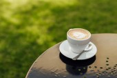 Fotografie cup of coffee with plate and spoon on wooden tabletop in garden