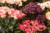 Fotografie beautiful pink and burgundy roses and carnation flowers at flower shop