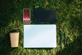 pohled shora na smartphone s obchodní kurzy přístroj a kávu v pohárek na zelené trávě v parku