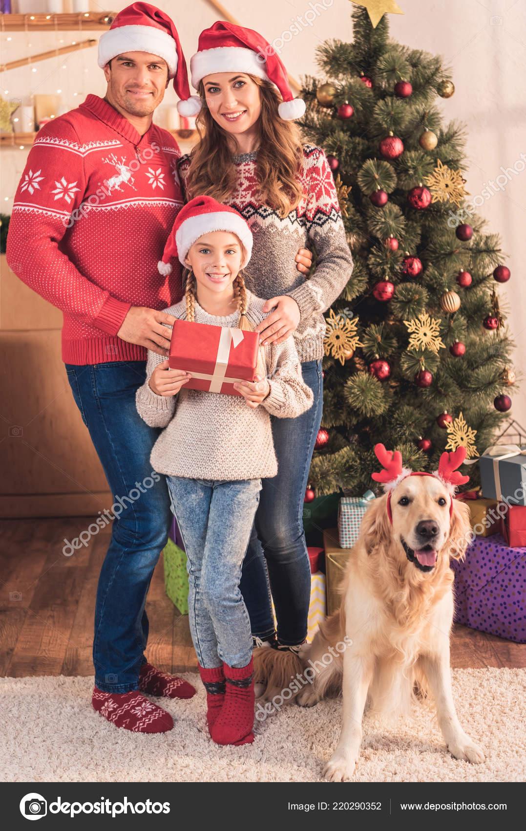 Family Santa Hats Dog Deer Horns Standing Christmas Tree Gifts ...