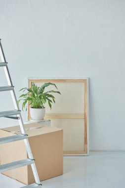 close up view of ladder, painting, houseplant and cardboard box in new home