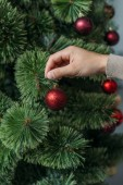 cropped image of man decorating christmas tree with red baubles at home