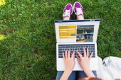 cropped image of woman using laptop with loaded booking page in park