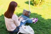 atraktivní žena pomocí přenosného počítače načten couchsurfing stránkou v parku