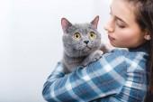 Fotografie young woman holding beautiful grey british shorthair cat