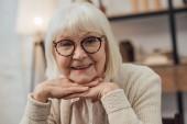 šťastná starší žena s šedými vlasy opřel bradu rukama a při pohledu na fotoaparát doma