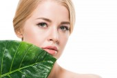 Fotografie beautiful blonde girl with green tropical leaf near face looking at camera isolated on white