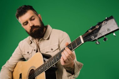 handsome man playing on acoustic guitar, isolated on green