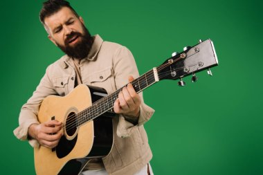 bearded man singing and playing on acoustic guitar, isolated on green