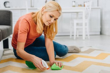 Concentrated blonde woman cleaning striped carpet with spray and rag stock vector