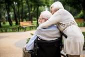 donna maggiore con il marito in sedia a rotelle nel parco