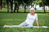 Fotografie šťastná žena starší relaxační jóga podložku na zeleném trávníku