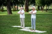 šťastný pár vysokých praktikování meditace sukhasana stojící představuje se sepjatýma rukama