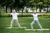 starší pár cvičení warrior Ii představuje stát na jógu