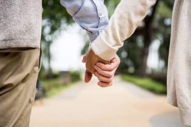 cropped view of senior couple holding hands while walking in park