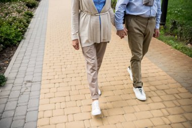 partial view of senior couple walking across paved sidewalk in park