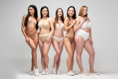 Fotografie five pretty multicultural woman in lingerie posing at camera, body positivity concept