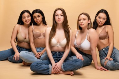 five beautiful multicultural girls in blue jeans and bras sitting and looking at camera, body positivity concept