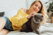beautiful girl in knitted sweater stroking scottish fold cat while lying in bed at home