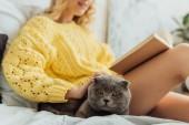 oříznutý pohled mladé ženy, která si četla knihu, zatímco ležela v posteli se skotskou kočkou