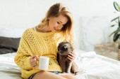 schöne junge Frau mit einer Tasse Kaffee sitzt auf dem Bett und umarmt schottische Faltkatze