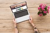 Teilansicht einer Frau am Tisch mit Laptop mit Shutterstock-Websiteund Kalanhoe-Pflanze im Blumentopf