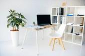 interiér moderní kancelářské místnosti s hrnkové rostliny, židle, stůl, infografiky, počítačem a police