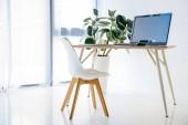 Fotografia camera con sedia e tavolo, pianta da vaso, computer, mouse del computer, tastiera del computer