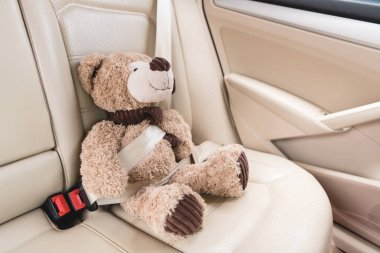 close up view of teddy bear with fastened seat belt in car