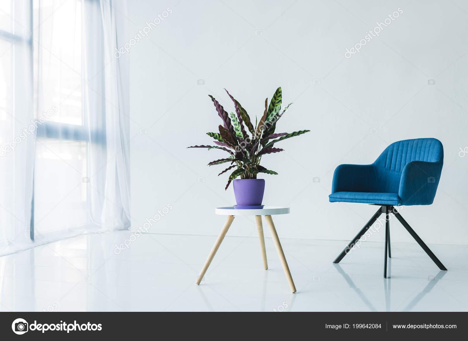 Interieur van woonkamer minimalistisch design met fauteuil