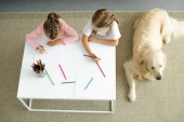 Fotografie overhead view of little sisters drawing pictures at table with golden retriever dog resting on floor near by at home