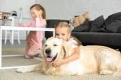 szelektív összpontosít gyerek átölelve Arany-Vizsla kutya a padlón, miközben húga rajz kép otthon