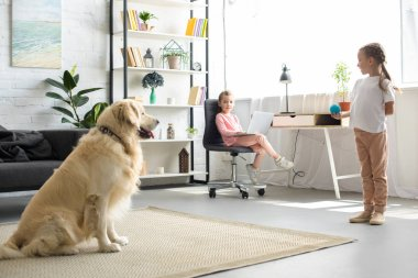 little child playing with golden retriever dog and sister with laptop sitting at table at home