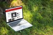 zblízka pohled laptop s internetové stránky bbc na trávě venku
