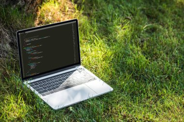 close up view of laptop with programming language code on grass outdoors