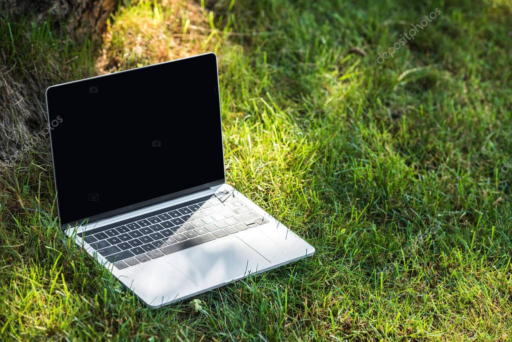 close up view of laptop with blank screen on grass outdoors