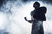 Fotografie bottom view of emotional american football player making fists and looking up against white smoke