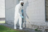 Fotografie pest control worker spraying chemicals with sprayer on building wall