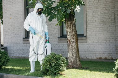 pest control worker spraying pesticides on bush