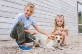 Fotografie siblings playing with dog at animals shelter and choosing for adoption