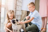 Fotografie children palming pug dog at animals shelter