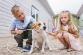 Geschwister spielen mit Hund im Tierheim und entscheiden sich für Adoption