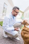 a gazdaság Mancs kutya állat-egészségügyi klinikán állatorvos oldalnézete