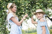 Fotografie happy mother and daughter in straw hats picking apples together
