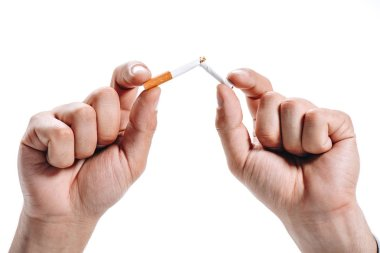 cropped image of man breaking unhealthy cigarette isolated on white