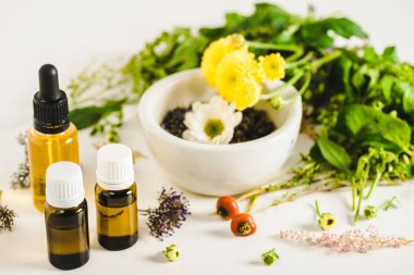 Bottles of essential oils and herbs on white surface, alternative medicine concept stock vector
