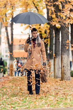 Handsome man in coat with umbrella standing on autumnal street with golden leaves falling from above stock vector