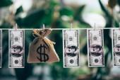Fotografie pytloviny pytel s znak dolaru a dolarové bankovky visí na laně