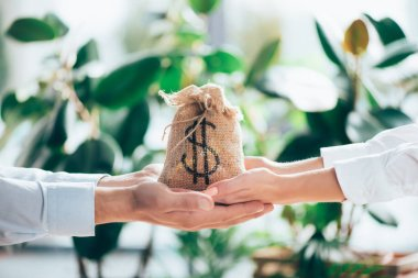 cropped shot of people holding sackcloth bag with dollar sign in hands