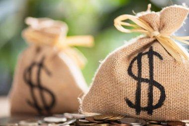 çul çanta dolar işareti ve para ile yakından görmek
